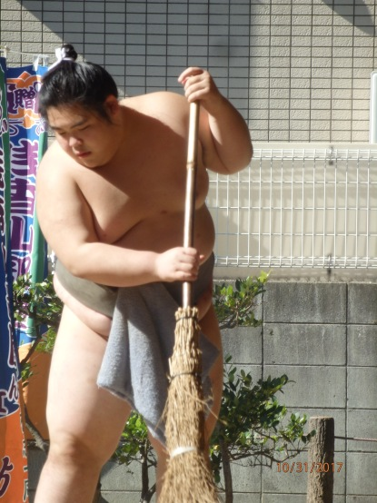 working Sumo