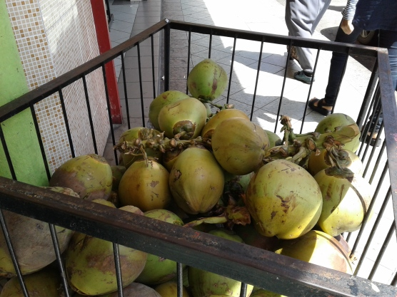 Coconuts are a popular thirst quencher