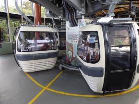 Safari Cable Car Ride